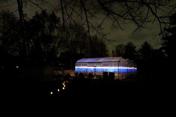Lichterfest_Gewaechshaus