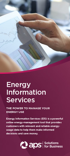 Energy Information Systems (EIS)