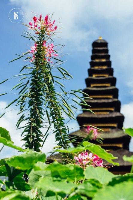 Bali14