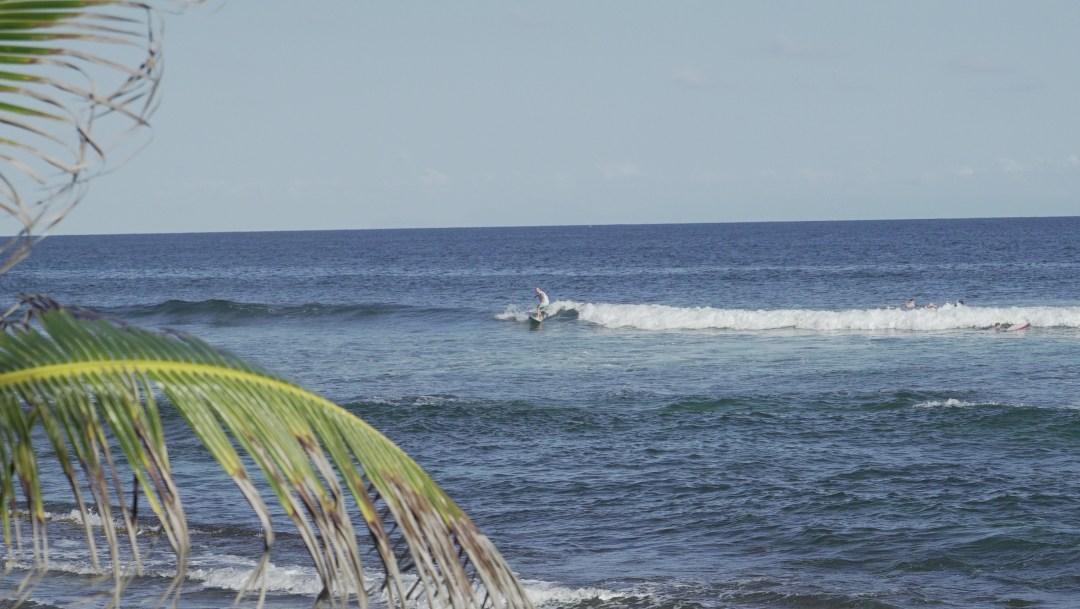 Martiniquella aalto oli pienempää, mutta toisaalta sitä pääsi surffaamaan paljon. Kummassakin puolensa tuumi Jaakko, kun surffia veti!
