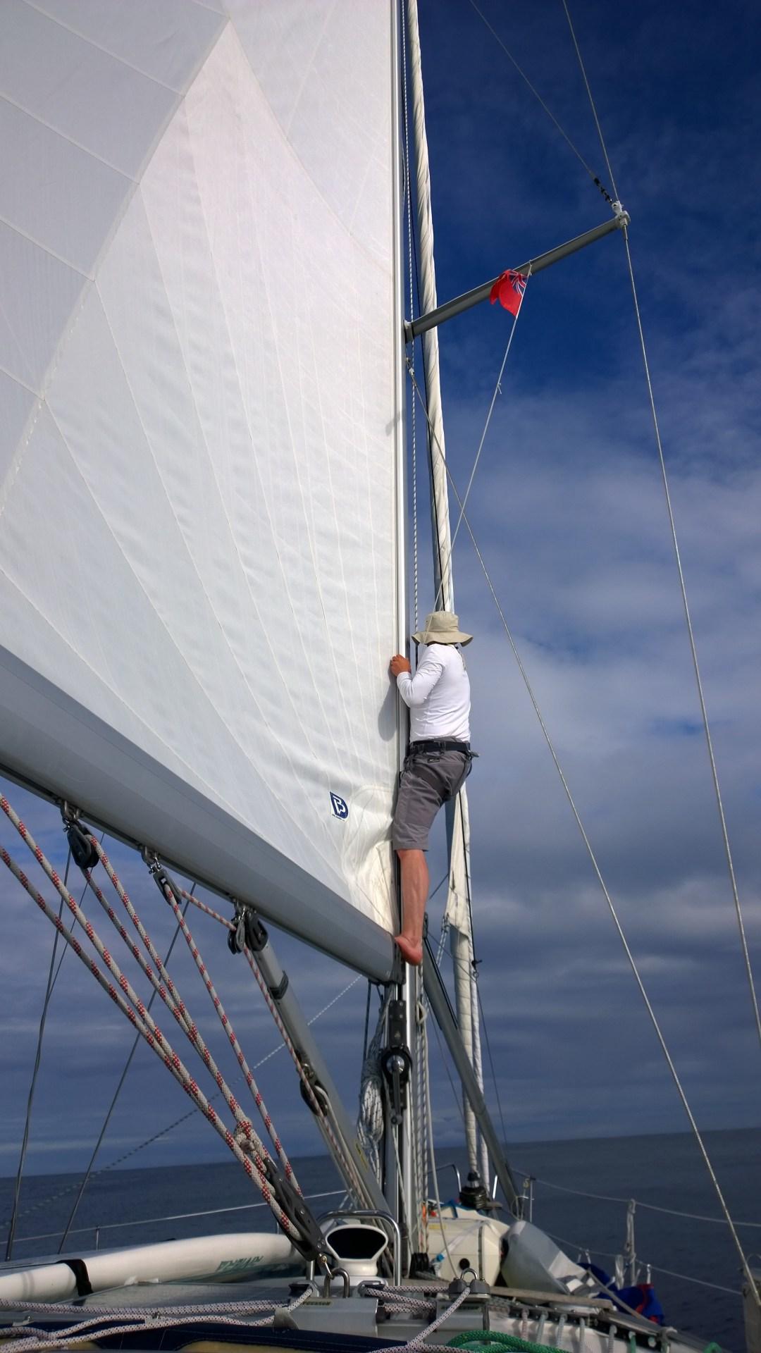 Taktikkomme kiipesi mastoon katsomaan, jos jossain tuulisi... Hienoa asialleen omistautumista!