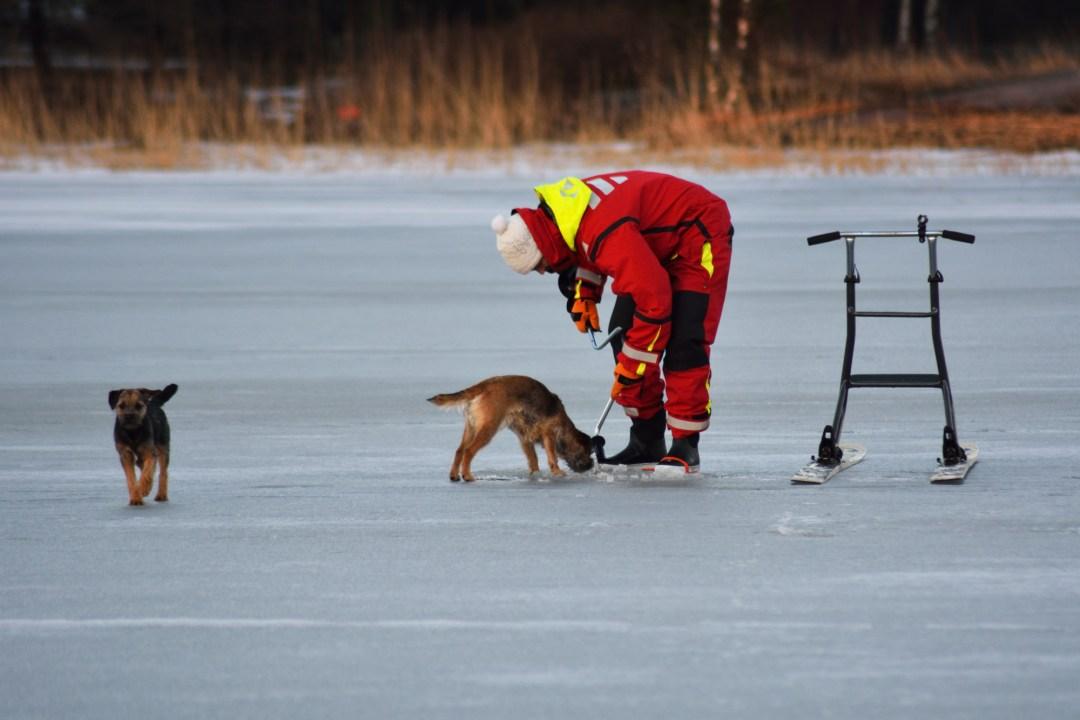 Jaakko kairaa ja Pipo tarkistaa mitä jään alta paljastuu.