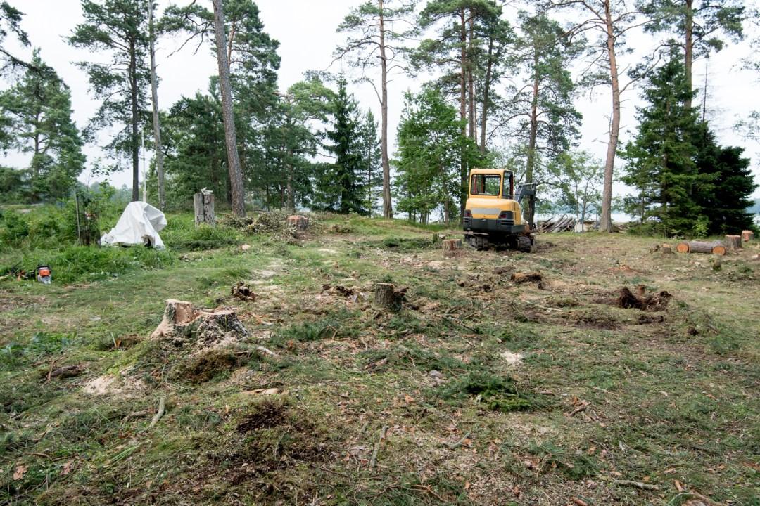 Jossain vaiheessa tuntui, että puut ei vähene ikinä, mutta siinä se on, puista vapaa talonpaikka!
