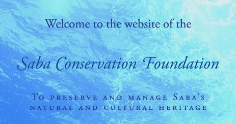 sabapark website