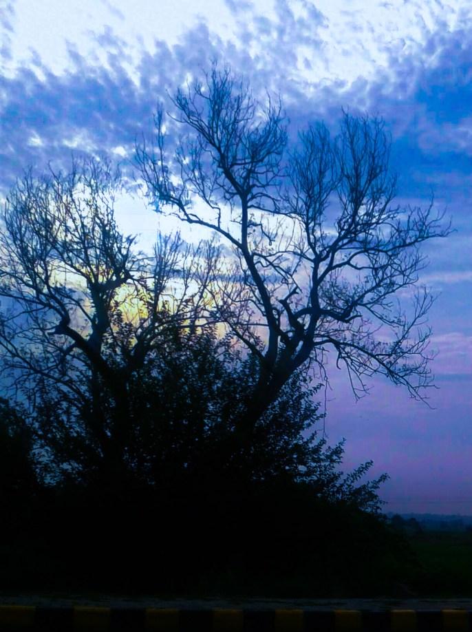morning hue