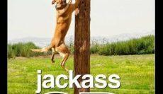Jackass-3D-2010-แจ็คแอส-ทีดี-e1565259822779