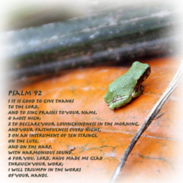 A Prayer of Thanksgiving - Psalm 92