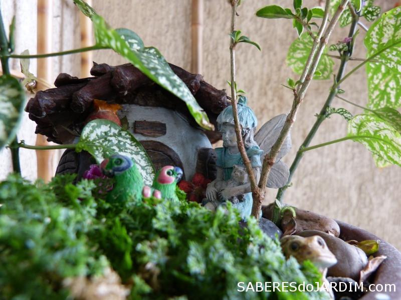 Fadas e Mini Jardins - Hypoestes