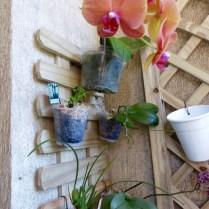 Treliça com Orquídeas