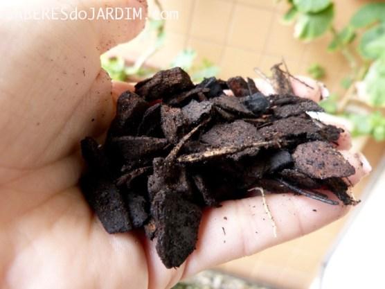 Carvão e Casca de Pinus para orquídea