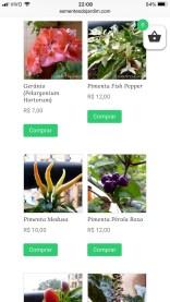Loja Sementes do Jardim