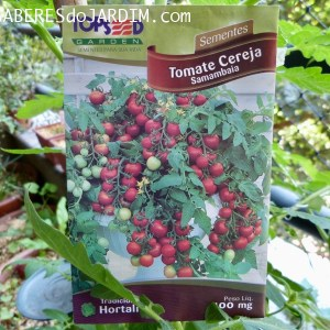 O Mito do Tomate Cereja Samambaia