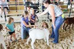 Leah Renyer, second from left, works with Hannah Lock, far left, and Aaron Lock, second from right, during Peewee Goat Showmanship at the Nemaha County Fair.