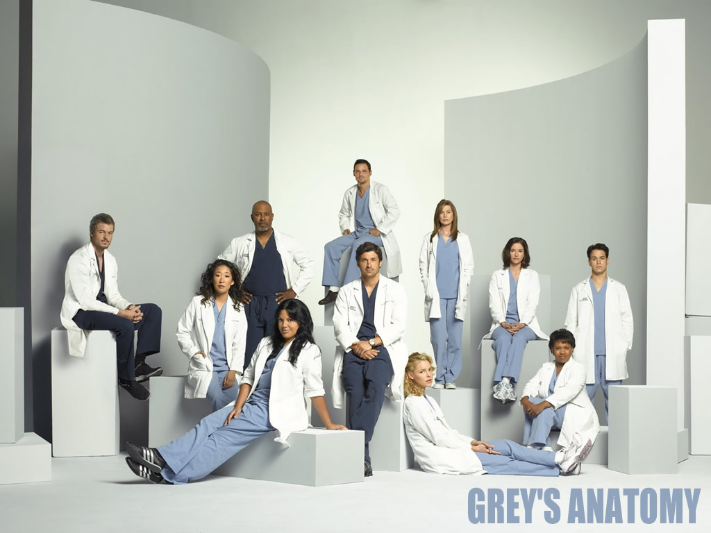 https://i2.wp.com/www.sabetudo.net/wp-content/uploads/2010/07/greys-anatomy.jpg