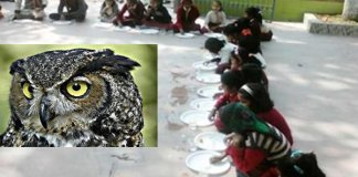 Bihars villagers did Owls cremation in Supaul