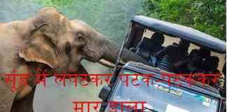 झारखण्ड में हाथियों का आतंक रुकने का नाम नहीं ले रहा है