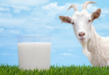Benefits of goat milk in hindi