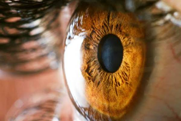 highest risk of glaucoma in diabetes