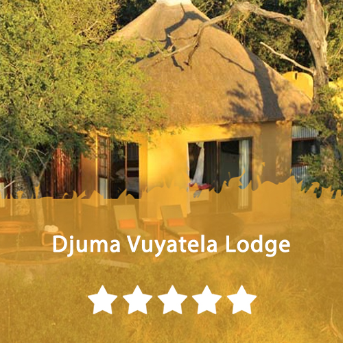 Djuma Vuyatela Lodge Featured Image