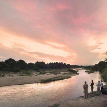 Exeter River Lodge Accommodation Activities Evening Walks