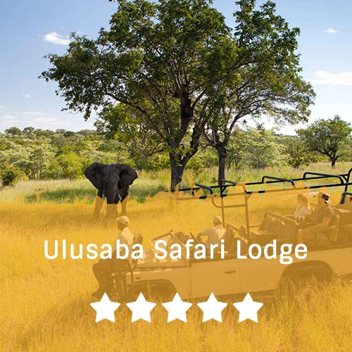 Sabi Sands  template   Ulusaba safari lodge