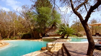 Ulusaba Safari Lodge Swimming Pool