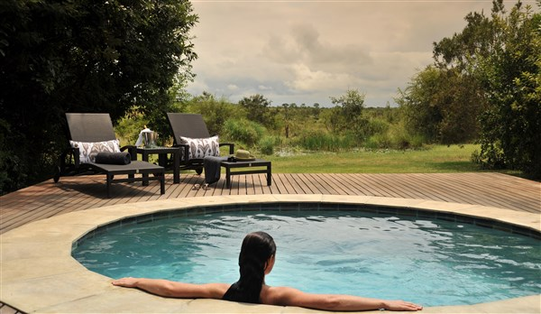 Savanna Private Game Lodge Savanna Suite Plunge Pool