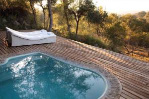 Leopard Hills Private Game Reserve Suite Pool