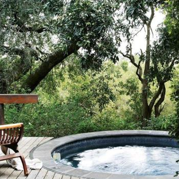 Londolozi Varty Camp Accommodation Deck Pool