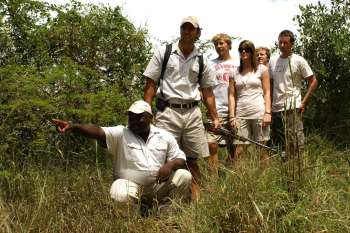 Londolozi Varty Camp Game Tracking
