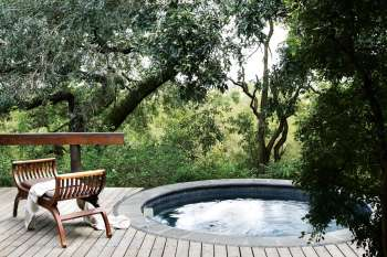 Londolozi Varty Camp Super Deck