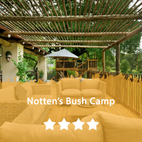 Notten's Bush Camp Featured Image