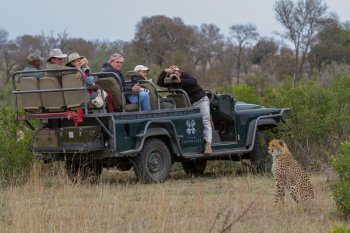 Pioneer Camp Game Drive