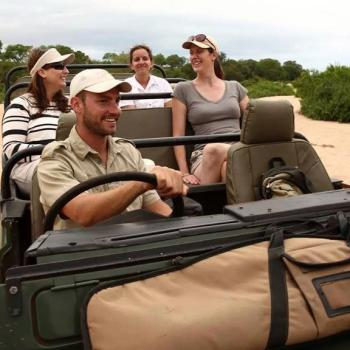 Leadwood Lodge Accommodation Activities Game Drive