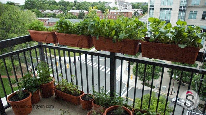 balconey-garderning-1