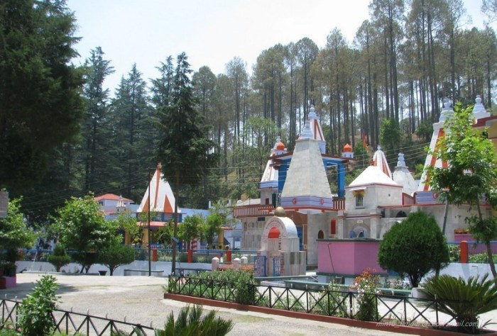 travel-place-peace-and-happiness-should-go-to-this-place-in-uttarakhand-dhanaulti-and-binsar (4)