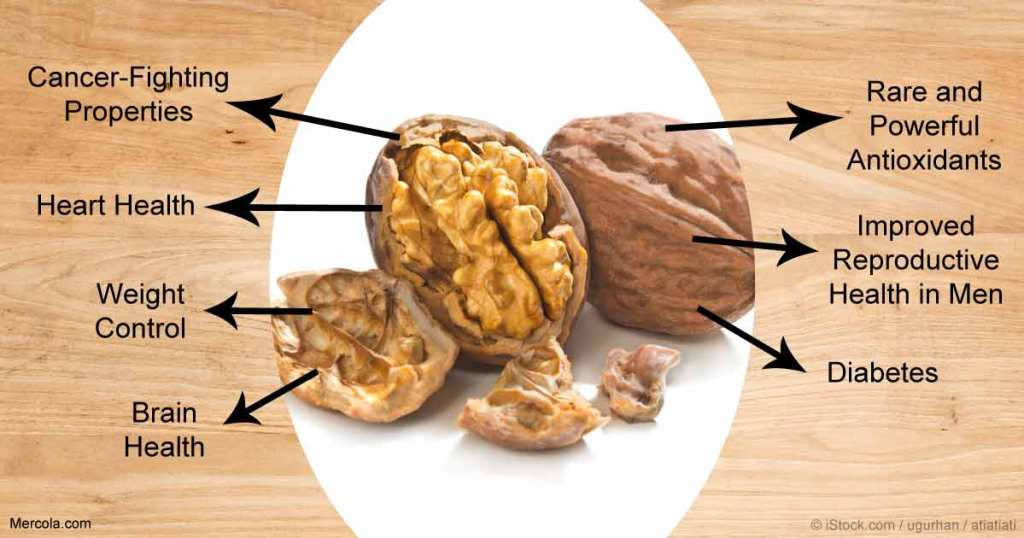 Walnut Health Benefits