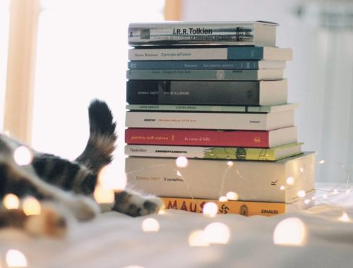 Libri preferiti 2017