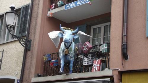 blue cow_1000px