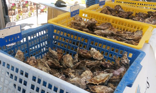 oysters, south of france, market