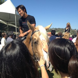 Fans get to greet the equine and human stars of Valitar