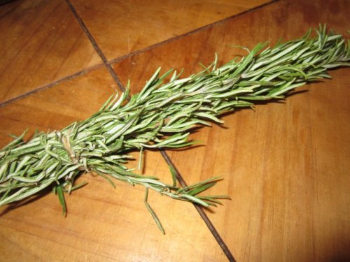 Frischer Rosmarin gibt unserem Gemüse ein wunderbares Aroma