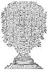 THE TREE OF NOAH.