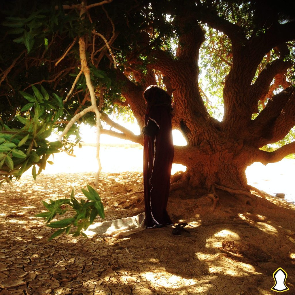 Praying under the Blessed Tree. Copyright Sacred Footsteps. All rights reserved.