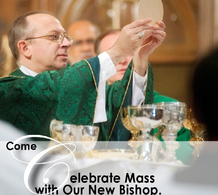 Come Celebrate Mass with our New Bishop – The Most Rev. Barry C. Knestout