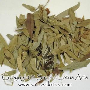 Chinese Herb: Fan Xie Ye (Senna Leaf), Folium Sennae