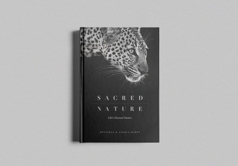 Sacred Nature standard edition