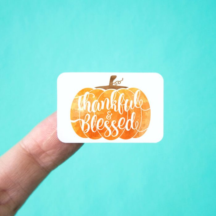 Thankful & Blessed Pumpkin Stickers
