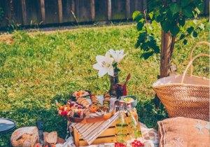picnic-blog