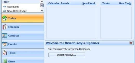 Efficient Ladys Organizer Crack